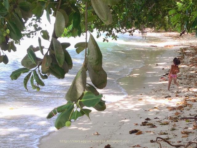 Bimba creola gioca in spiaggia