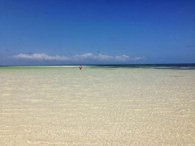 Seychelles bassa marea