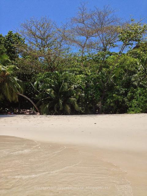 I colori delle Seychelles