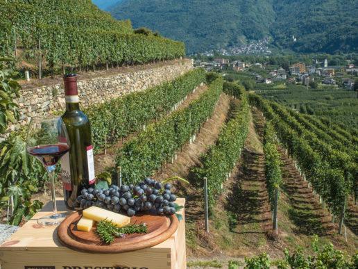 Paesaggio e gastronomia della Valtellina